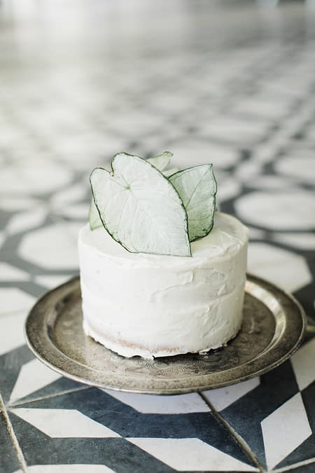 A simple modern cake decoration of green and white foliage leaves on a single tiered white wedding cake, with a silver platter and black and white tiling designed by Nectar and Root, Vermont wedding florist.