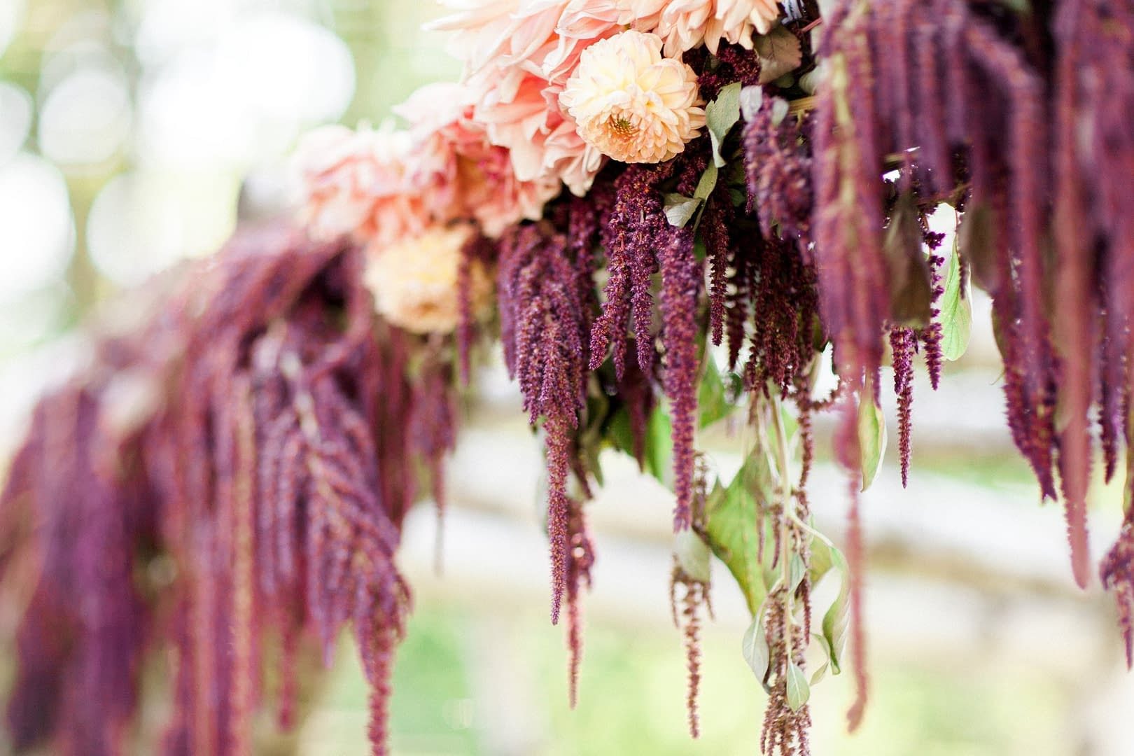 A modern fall floral arbor of September flowers in a moody color palette by Nectar and Root, Vermont wedding florist at Stowehof Inn in Stowe, Vermont.