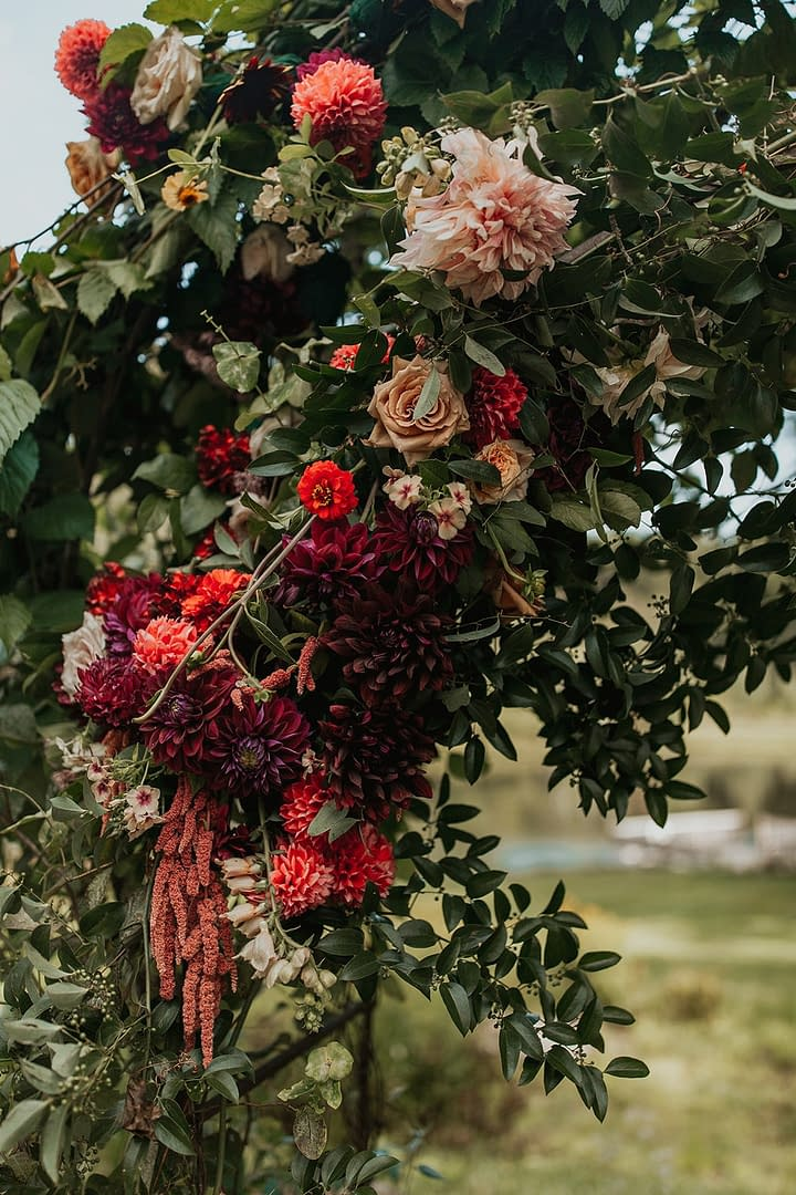 Lush romantic fall outdoor ceremony arbor of September cafe au lait dahlias, garden roses, and hanging amaranth in a burgundy and rust color palette decorated by Nectar and Root, Vermont wedding florist at Edson Hill in Stowe, Vermont.